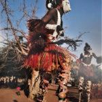 Les masques à échasses incarnent l'esprit des arbres